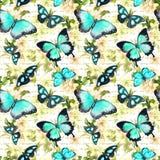 花,蝴蝶,手书面文本笔记 水彩 无缝的模式 库存照片