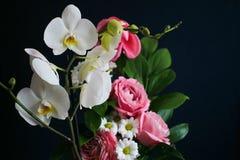 花-白色兰花、桃红色玫瑰和雏菊花束  免版税库存图片