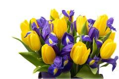 花 黄色郁金香和虹膜花束 免版税库存图片