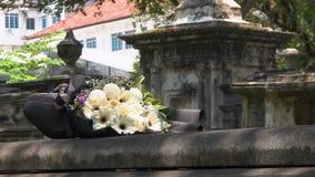 花Cinemagraph在坟茔的在新教徒公墓 股票视频