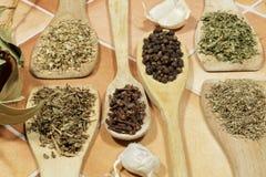 芳香作为香料使用的草本和种子在烹调 免版税库存照片