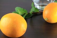 芳香疗法油用柠檬和薄菏 免版税库存图片