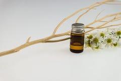 芳香疗法温泉概念,花精华瓶装饰与 免版税库存图片