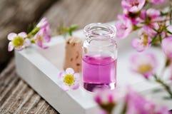 芳香疗法 库存图片