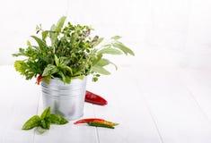 芳香草本和香料从庭院 免版税库存照片