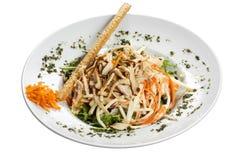 芹菜、红萝卜和鸡丁沙拉 库存图片