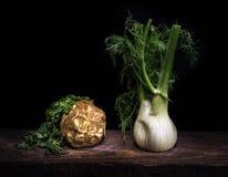 芹菜和茴香 库存照片