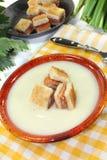 芹菜汤奶油用三文鱼油煎方型小面包片 图库摄影