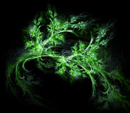 芹菜绿色 库存图片