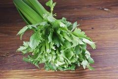 芹菜绿色 库存照片