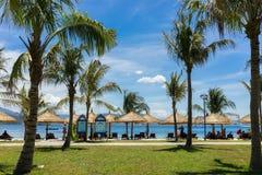 芽庄市,越南- 2016年7月31日:靠岸在Vinpearl有草地的土地, Hon Tre海岛和椰子树 图库摄影