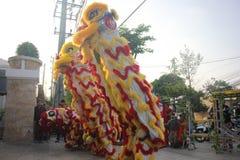 芽庄市,越南- 2016年2月15日:在期间,未认出的人民跳舞与中国狮子在公司区 库存照片