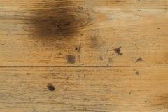苍白柚木树木头 免版税库存图片