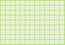 苍白用花装饰的绿色的网格 免版税库存照片