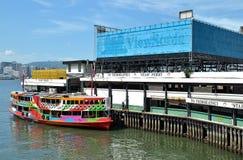 柴苍白轮渡的码头 库存照片