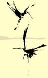苍鹭二 免版税图库摄影