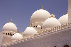苏丹扎耶德清真寺 免版税图库摄影