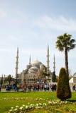 苏丹阿哈迈德清真寺(蓝色清真寺)在伊斯坦布尔 库存照片