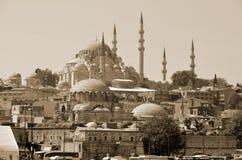 苏丹阿哈迈德清真寺 图库摄影