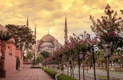 苏丹Ahmet清真寺(蓝色清真寺),伊斯坦布尔-土耳其 免版税库存照片