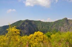 维苏威火山 库存图片