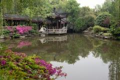 苏州春天庭院古典庭院  库存图片