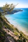 苏必利尔湖海岸线树 免版税图库摄影