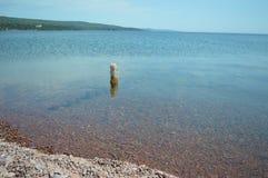 苏必利尔湖畔海岸线大湖盛大marais 库存图片