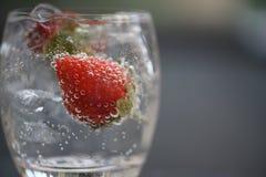 苏打水健康饮料在一块玻璃的用新草莓和泡影 免版税库存图片