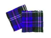 苏格兰人被检查的织品 库存照片