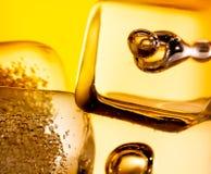 苏格兰威士忌酒特写镜头在玻璃的与在白色的冰块 免版税库存照片