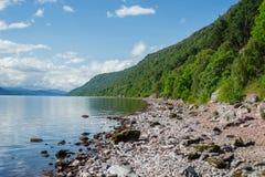 苏格兰的奈斯湖岸  库存图片