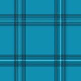 苏格兰纺织品背景 图库摄影