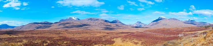 苏格兰自然 免版税图库摄影