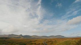 苏格兰高地使-小组在山的绵羊-英国环境美化 股票录像