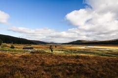 苏格兰高地风景的惊人的射击被采取在A890对因弗内斯-苏格兰,英国 免版税库存照片
