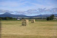 苏格兰高地,典型的风景 库存图片
