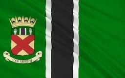 苏格兰,英国的克拉克曼南郡理事会旗子  库存例证