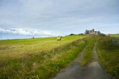 苏格兰绿色风景,农场在奥克尼郡岛 库存照片
