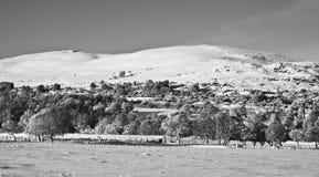 苏格兰Snowscape 免版税库存照片