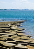 苏珊Hoi壳化石海滩墓地 库存图片