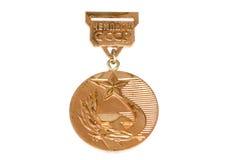苏联冠军金黄奖牌 科沃拉,芬兰06 09 2016年 库存图片