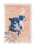 苏联-大约1966年:在俄罗斯打印的邮票显示两 库存照片