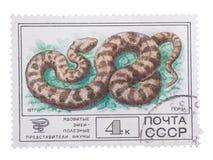 苏联-大约1977年:在展示系列打印的邮票 库存图片