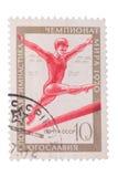 苏联-大约1970年:邮票在展示o打印了 库存图片