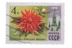 苏联-大约1978年:邮票显示大丽花红星报, 库存照片