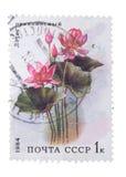 苏联-大约1984年:邮票,展示桃红色莲花, 198 图库摄影