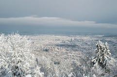 苏黎世全景冬天视图 库存照片