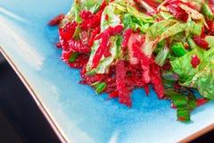 莴苣和甜菜根沙拉 免版税库存图片