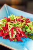 莴苣和甜菜根沙拉 库存图片